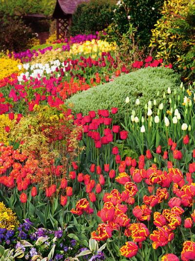 Самодельные клумбы для цветов